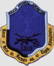 grupos geof,halcon,prefectura y comando de asalto aereo 601